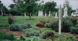 cemeterysummer